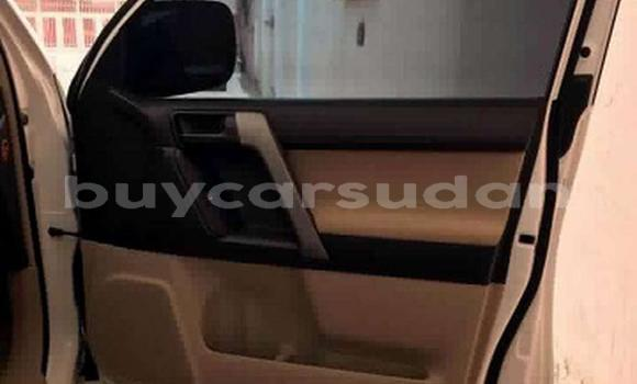 Buy Used Toyota Land Cruiser Prado White Car in Bahri in Khartoum