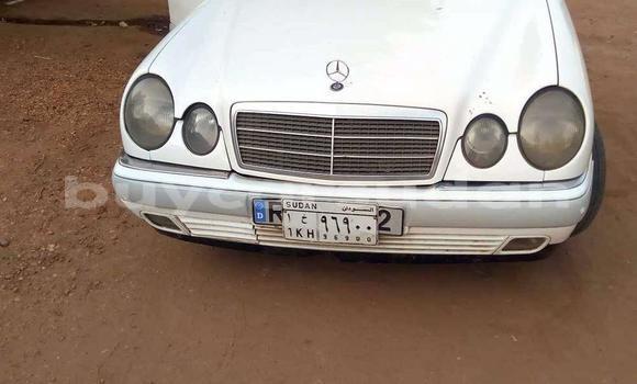 Buy Used Mercedes‒Benz C-Class White Car in Khartoum in Khartoum