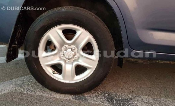 Buy Import Toyota RAV 4 Blue Car in Import - Dubai in Al Jazirah State