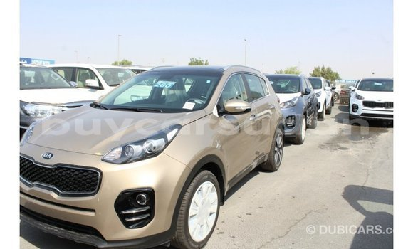 Buy Import Kia Sportage Black Car in Import - Dubai in Al Jazirah State