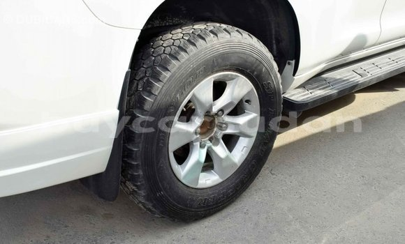 Buy Import Toyota Prado White Car in Import - Dubai in Al Jazirah State