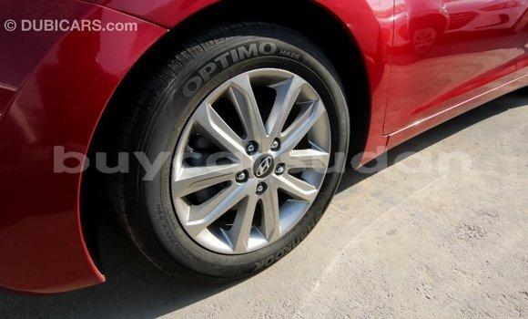 Buy Import Hyundai Elantra Red Car in Import - Dubai in Al Jazirah State