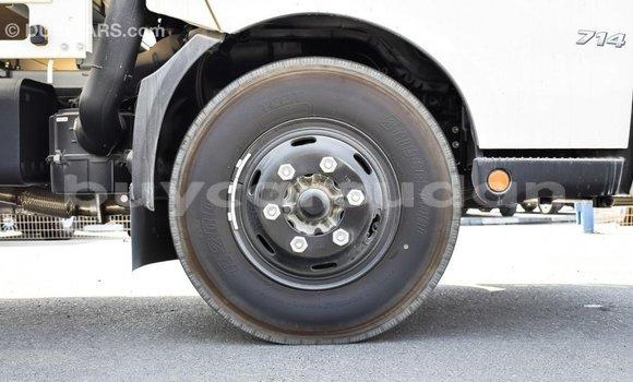 Buy Import Hino 300 Series White Truck in Import - Dubai in Al Jazirah State