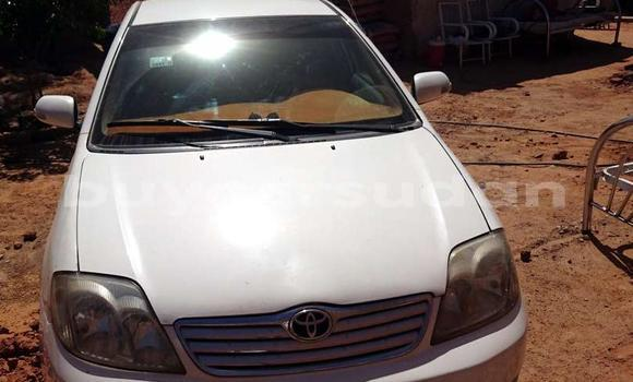 Buy Used Toyota Corolla White Car in Khartoum in Khartoum